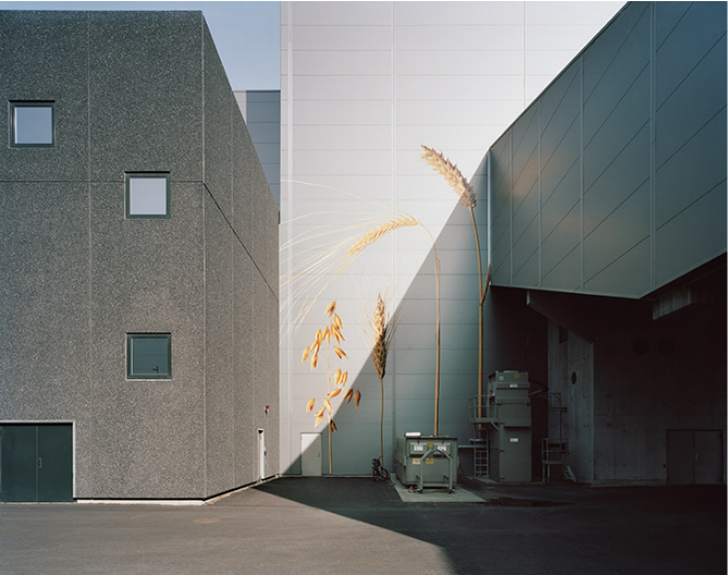 felix-odell-photography-2