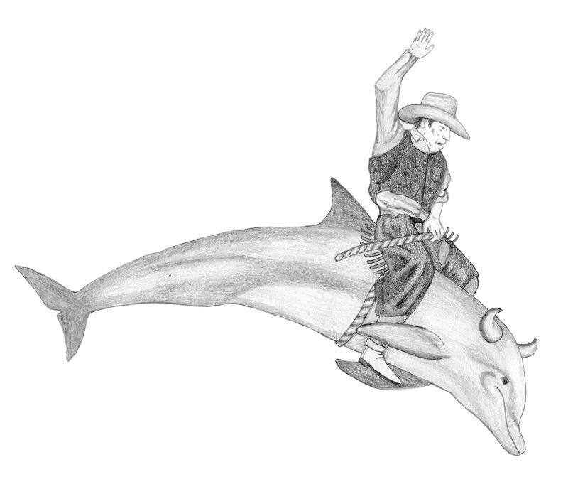 paul-windle-dolphin-bull