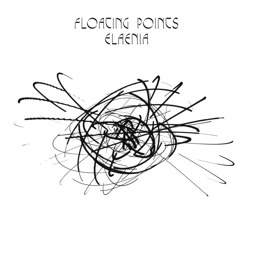floating-points-elaenia